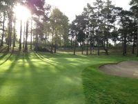 Camberley Heath Golf Club - Camberley - Golf